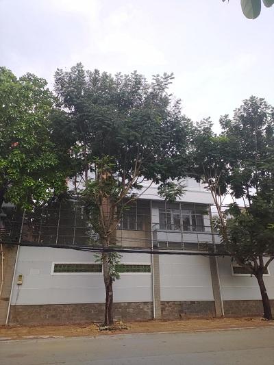 Cho thuê nhà đường Nguyễn Văn Hưởng Quận 2